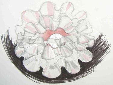 cauldron-design-horizontal.jpg